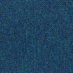 Prime Dback - 552-blue-solid - 1-week-delivery